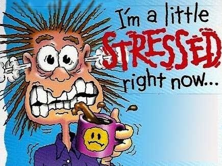 Skúškový stres